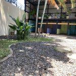 Fotografía del Hotel de Perros. Patio con sombra y jaulas grandes.