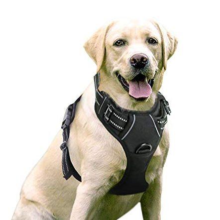 Pechera Ajustable para perros color negra